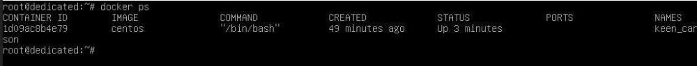 Запусчк контейнера в Docker