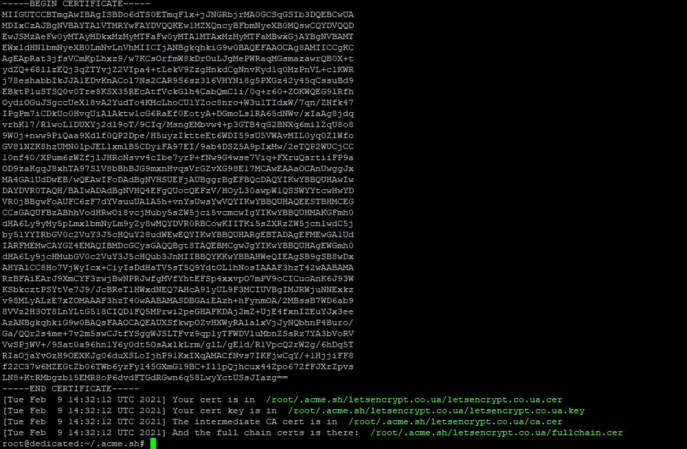 Успешный выпуск Let's Encrypt wildcard сертификата