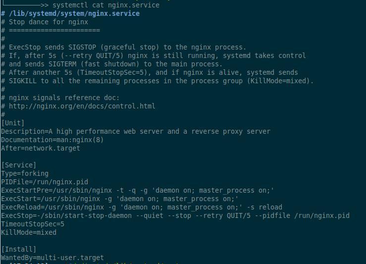 Файл юнита Nginx
